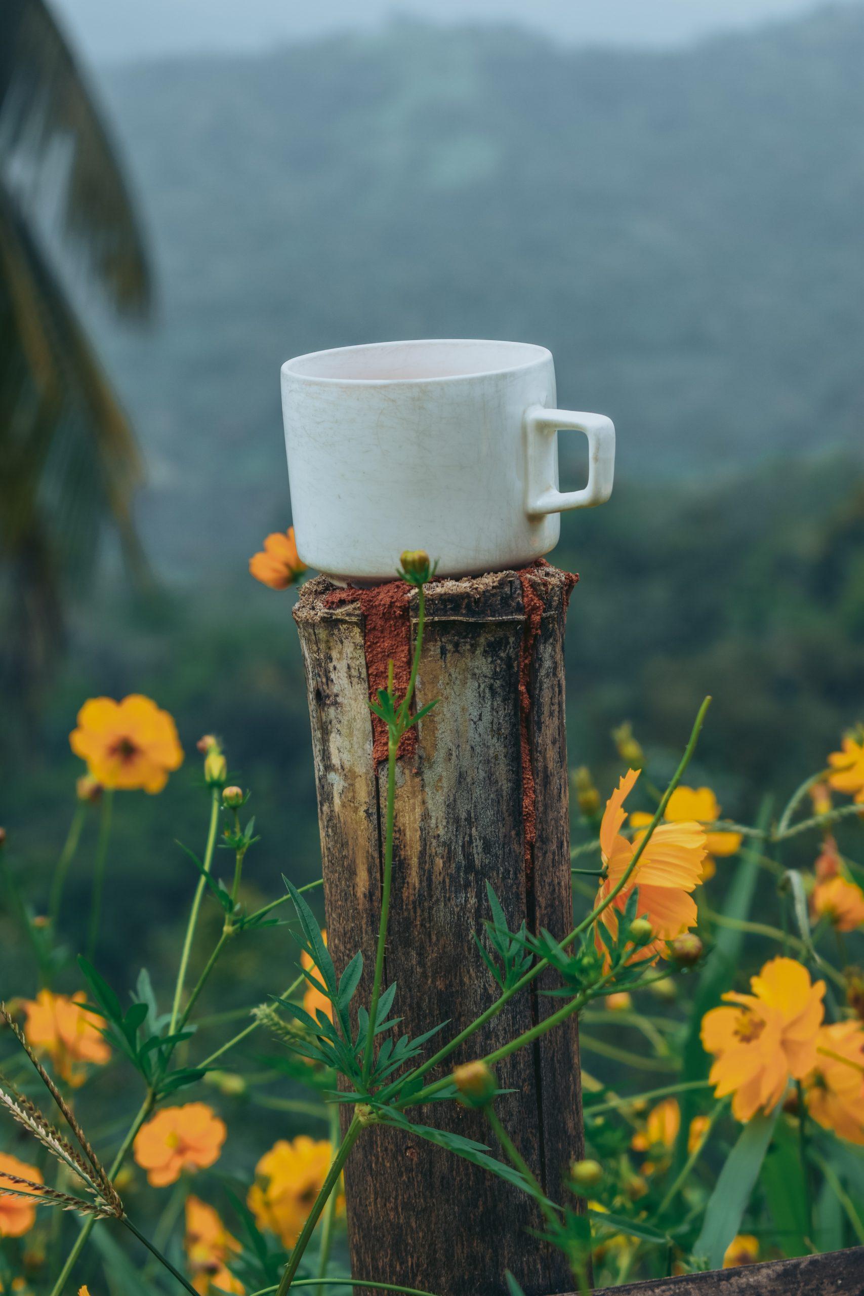 white ceramic mug on brown wooden post