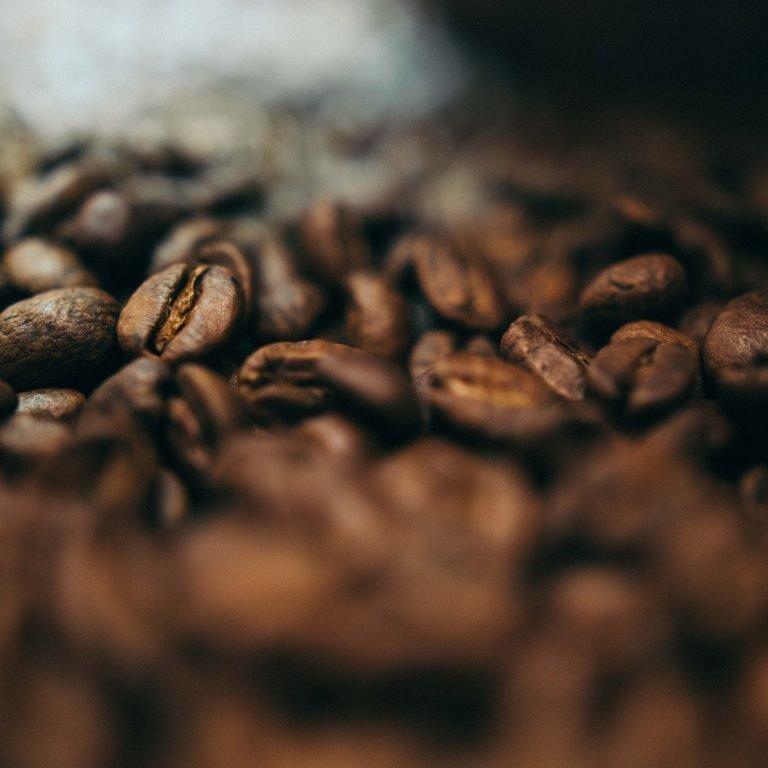 brown coffee seeds